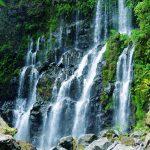 cascade Reunion
