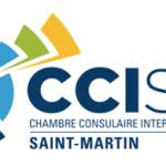 logo ccism