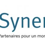 logo synergile