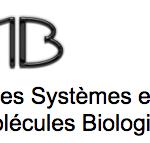 DSIMB-logo-provisoire