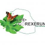 corexerun_2