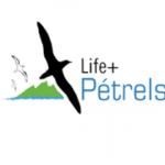 life_petrels